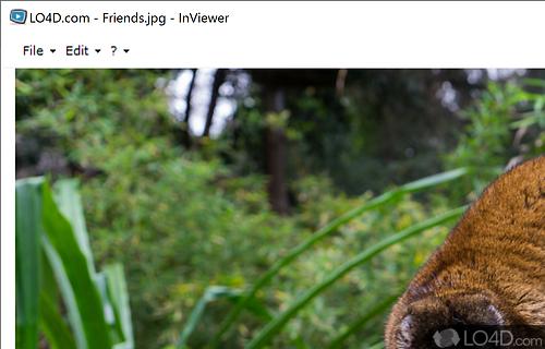 InViewer Screenshot