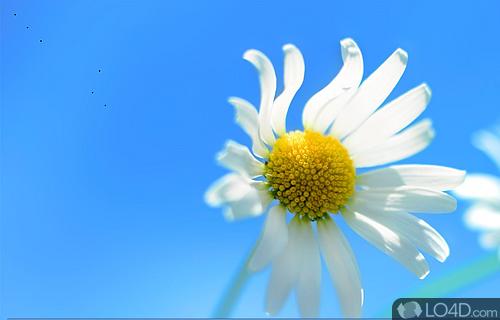 Shapeshifter Screenshot