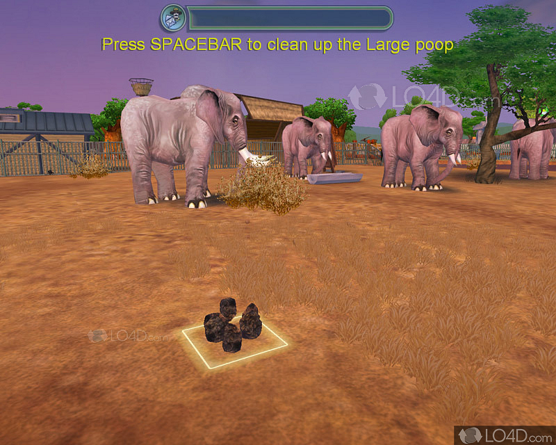 Zoo Tycoon 2 downloads - LO4D com